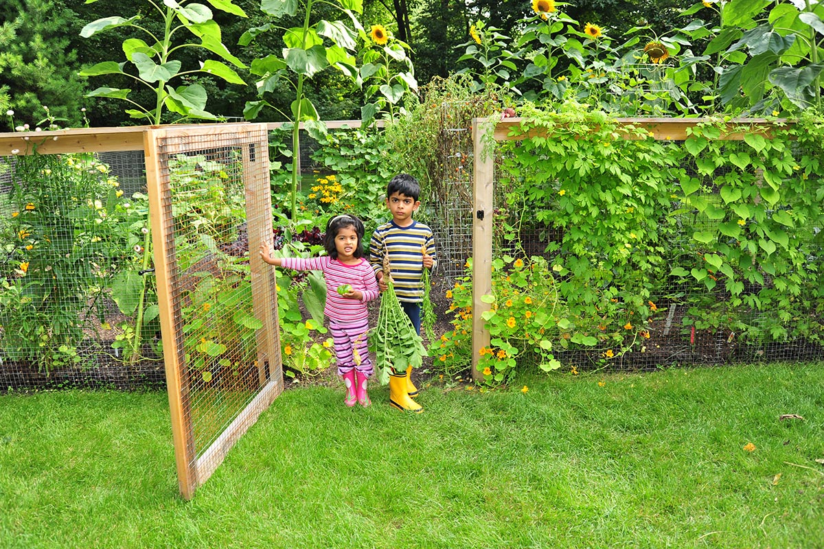 our mission the organic gardener